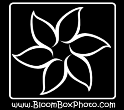Normal bloombox