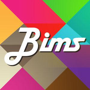 Bims icon