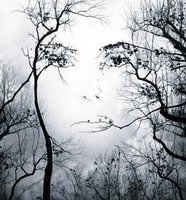 Thumb face in trees illusion