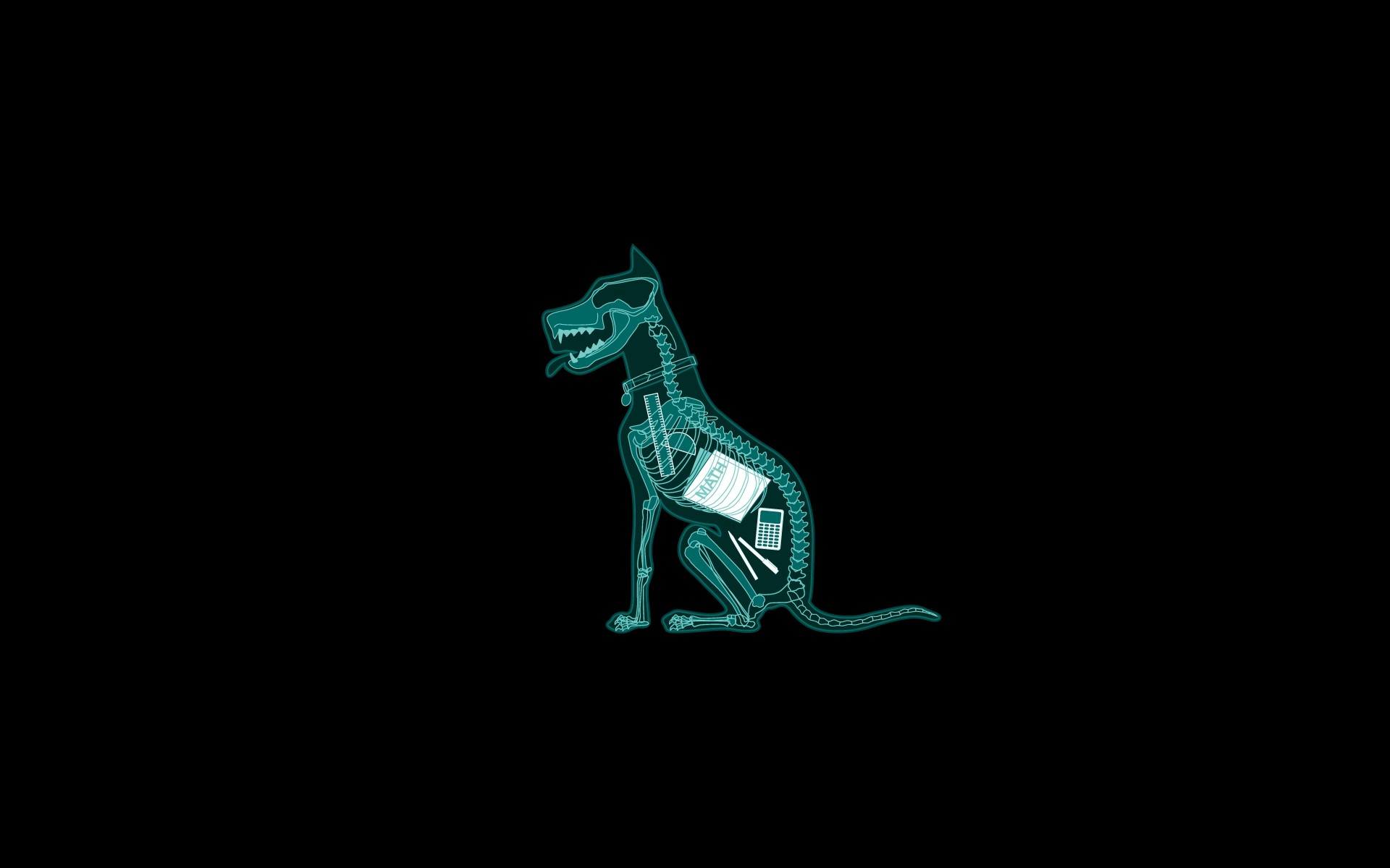 Dog skeleton funny wallpaper