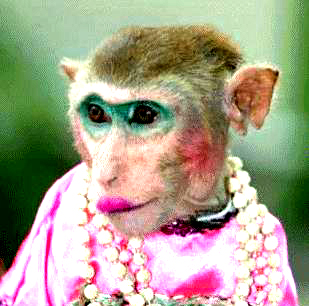Topeng monyet 1