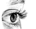 Normal eyes